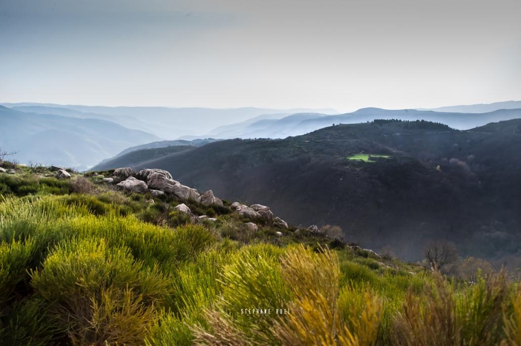 Ou trouver un serieux photographe-professionnel a-avignon-vaucluse-provence visuel Nature