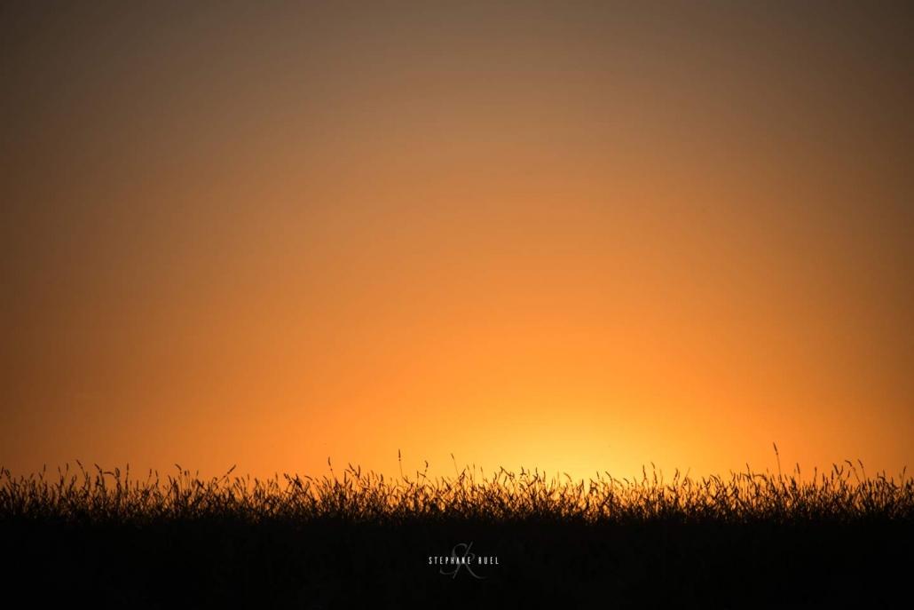 stephane-ruel-photographe-professionel a Avignon 84000 Vaucluse paysage nature