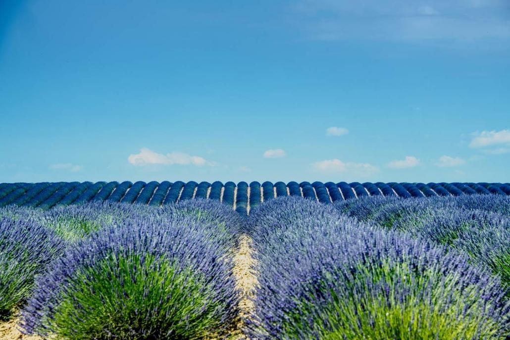 stephane-ruel-un super photographe-professionel a Avignon 84000 dans le Vaucluse paysage nature