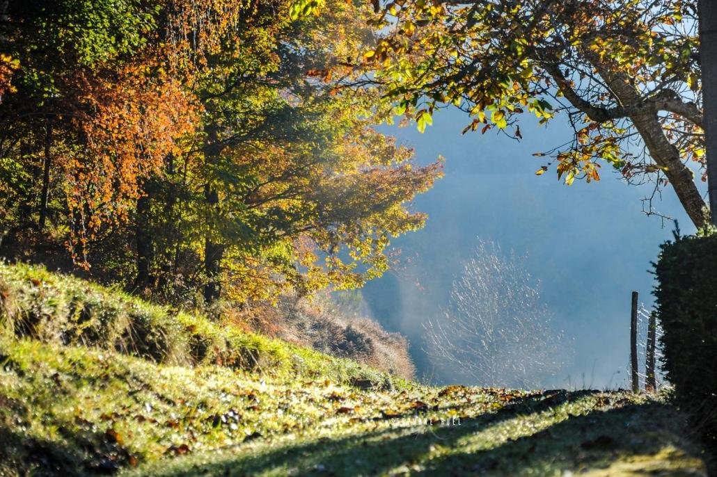 photo-de-lozere-automne vaucluse-84000-stephane-ruel-photographe-professionel-provence-vaucluse