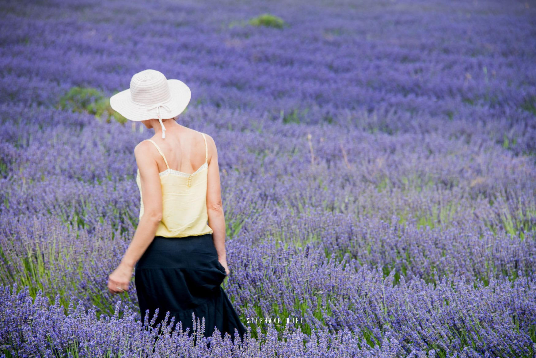 Ou trouvez à Avignon un photographe professionnel situé à Avignon dans le vaucluse en Provence région Paca Stéphane Ruel realise des superbes Photos à votre image